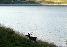 nordkapp-ferragosto2012-007