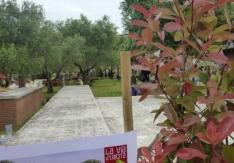 festival-del-verde-2014-_-roma-19