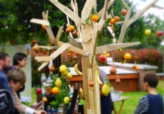 festival-del-verde-2014-_-roma-22