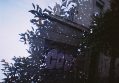 andreapiotto-lomography-010