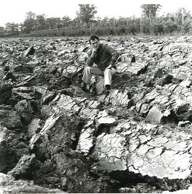 romagna, 1975