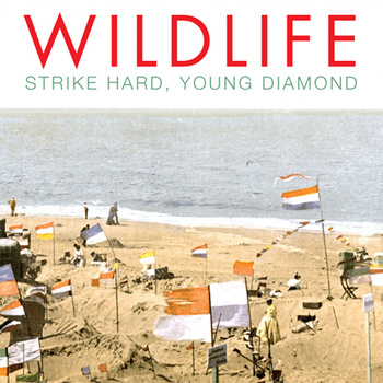 wildlife-album