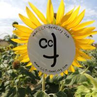 CCT-GIRAmondo