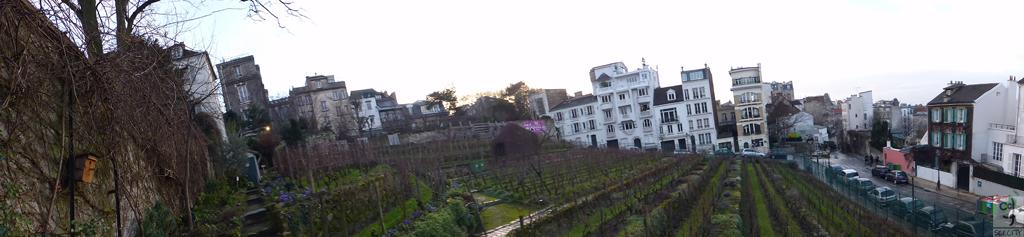 D (1) Montmartre