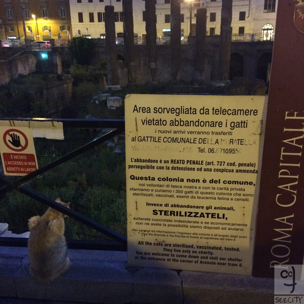 Roma-byChiara-5