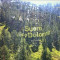 I Suoni delle Dolomiti: concerti d'estate in alta quota