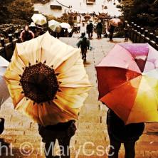 002-cover-china-mary