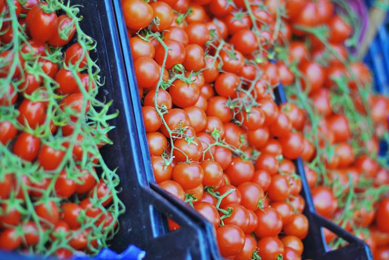 Sicilia_Pomodori