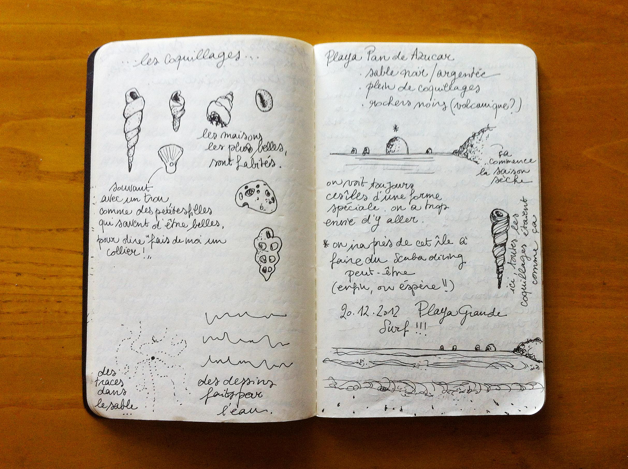 Costa Rica - des coquillages et des îles - Silvia Robertelli