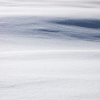 Venelina-Preininger_2_cover