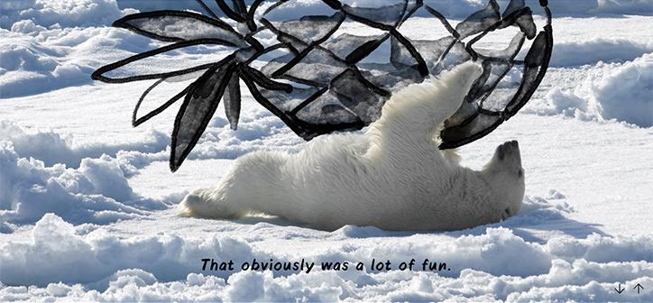 christoph-niemann-national-geographic-polar-bear