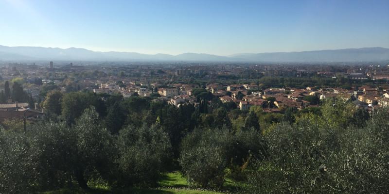 Vista su Prato - 2016