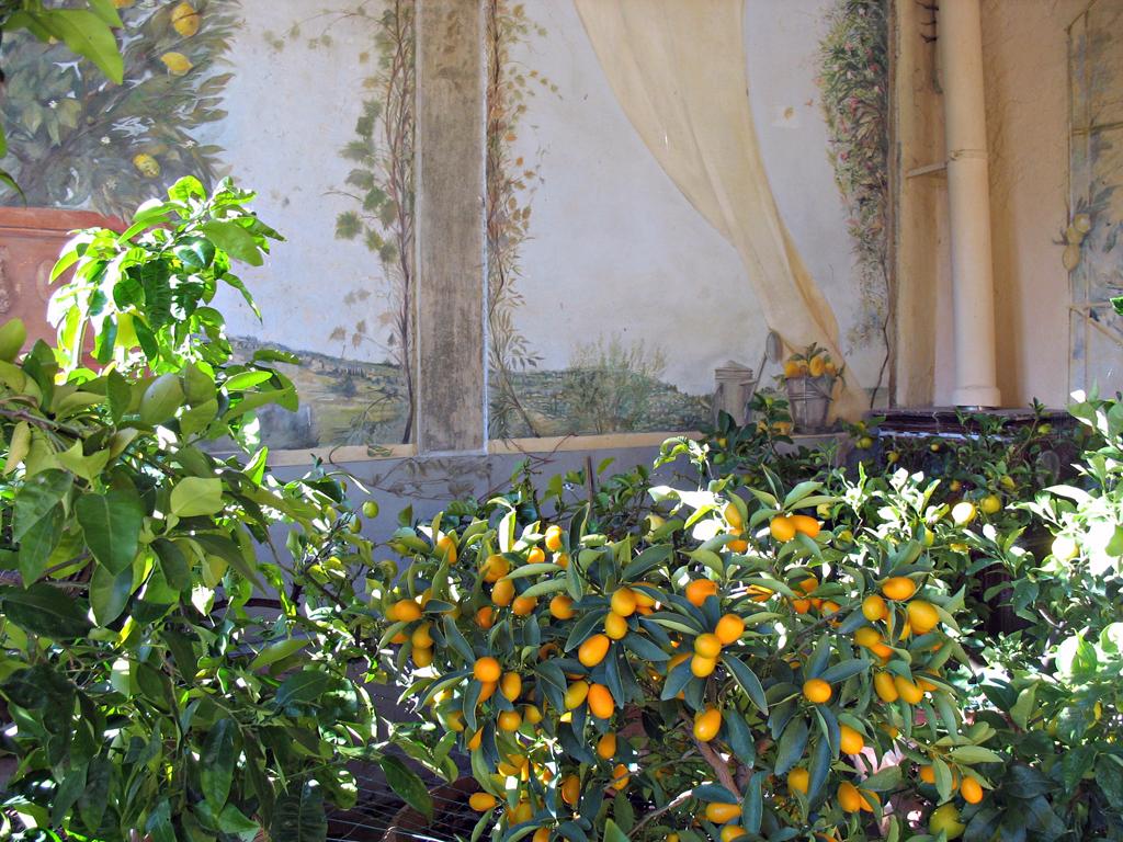 orangerie_carmignano_prato