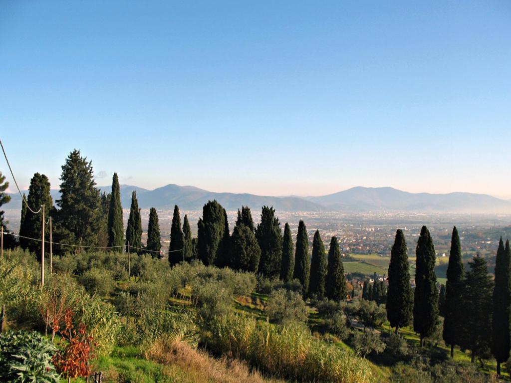 prato_cipressi_panorama_carmignano