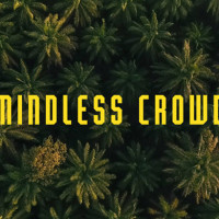 Mindless Crowd by Jacco Kliesch - video