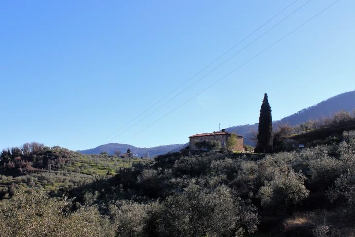 Strade del Montalbano (2)